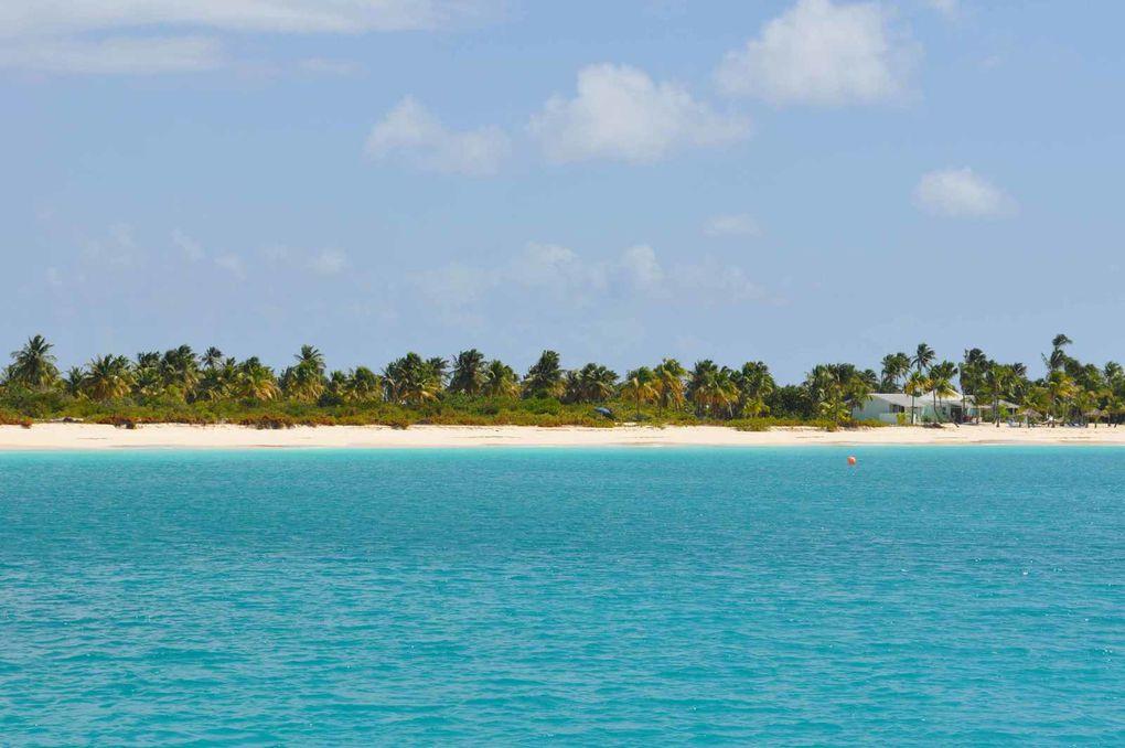 Barbuda l'île préservée : Cocoa Point