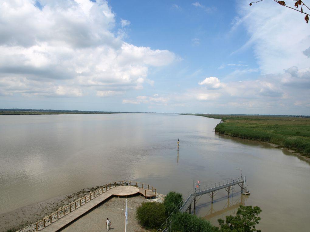 Balade le long de la Loire à l'occasion du Festival Estuaire 2009. A découvrir absolument !