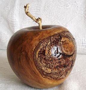 Une pomme dans un cerisier