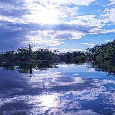 Das nachsynodale apostolische Schreiben Querida Amazonia vom 2. Februar 2020
