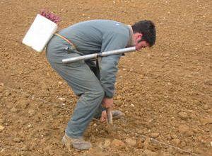 savez-vous planter la vigne?