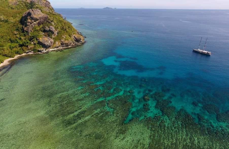 Tara Pacific: Pourquoi les récifs coralliens se dégradent irrémédiablement
