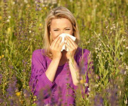 Allergies : le pollen n'y est pour rien ?