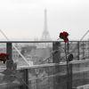 3 roses rouges et une...