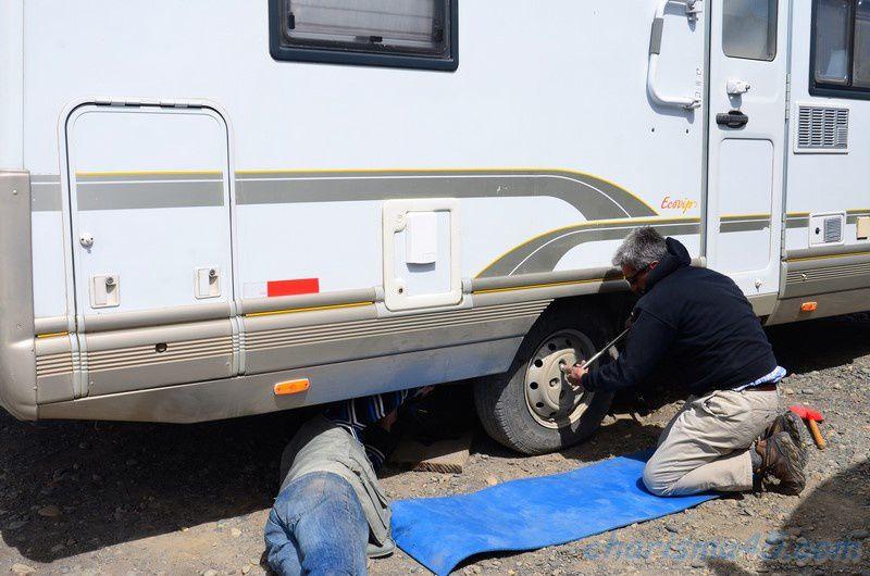Parc de manchots empereur de Camaron (Chili en camping-car)