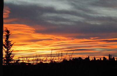 Panorama de mes matins d'hiver 2019