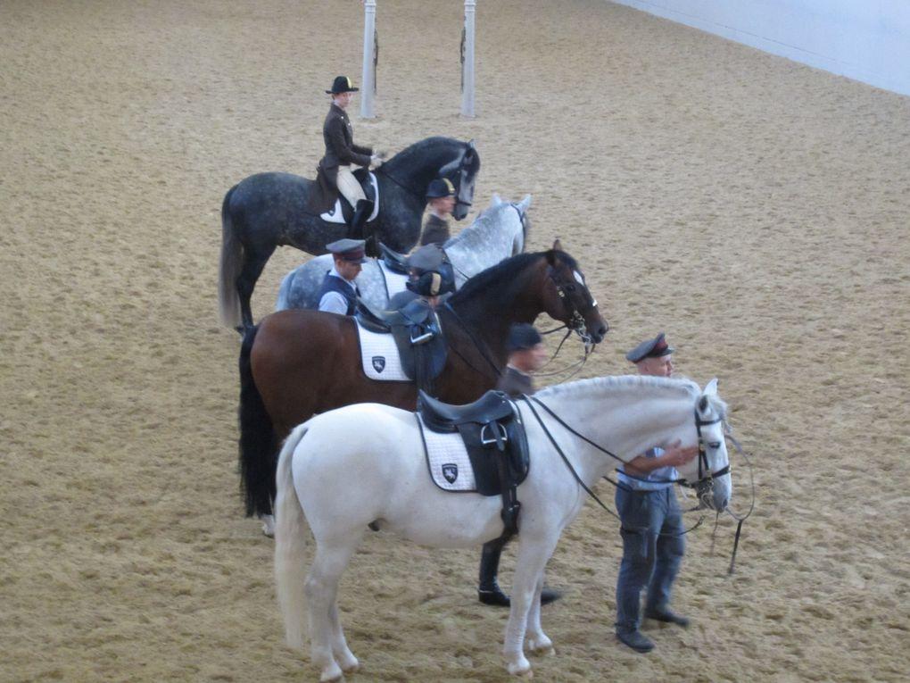 L'Ecole d'Equitation espagnole et son illustre ballet de lipizzans. Photos: Emmanuel CRIVAT 2012