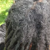 Dreadlocks Alpitude