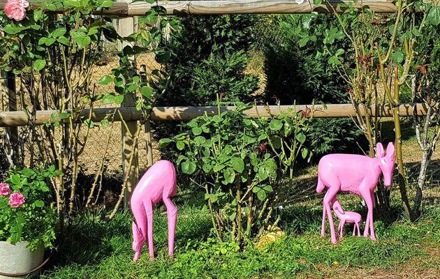 Recyclage décoratif pour embellir le jardin