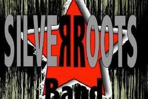 Silver Roots, groupe rock de reprises