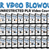 Unrestricted PLR Video Training Blowout Deal