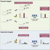Target-Specific Precision of CRISPR-Mediated Genome Editing
