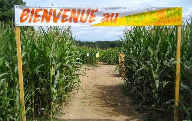 Guérande - Pop Corn Labyrinthe, une aventure en pleine nature..., jusqu'au 30 aout 2020 pour trouver la sortie !
