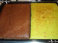 Napolitain menthe / chocolat