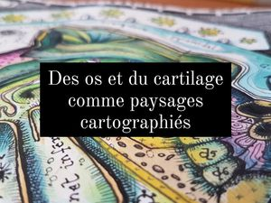Cartanatomy / Art Prints A4 N&B réhaussés à l'aquarelle