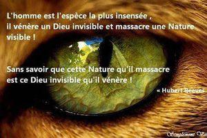 Déclin de la biodiversité: Du faux sang coule au Trocadéro!
