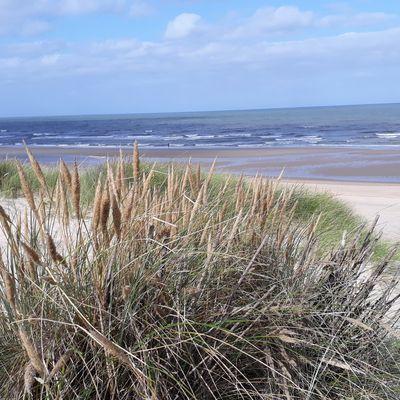 Découverte de la côte Belge