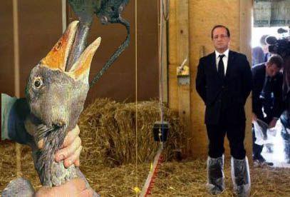 François Hollande défend foie gras et gavage