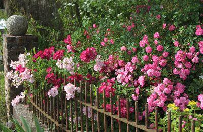 Les portes ouvertes MelaRosa ... ♪ c'est un jardin ♫ ... extraordinaire ♫