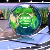 DEMAIN EN 3D - Des arbres pour préserver notre biodiversité et notre planète - Le Journal du week-end | TF1