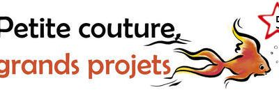PETITE COUTURE GRAND PROJET N°5