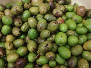 Première récolte de mes oliviers..