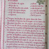 Livre Recettes Brodées de Mamigoz : Feuilles de Vigne farcies au riz - Chez Mamigoz
