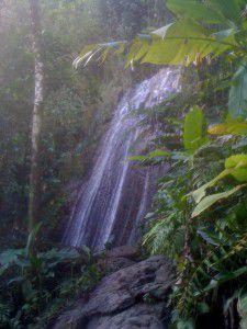 2011 décembre Puerto Rico & îles Vierges (UK)