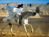 Hero 英雄 2002 - Adieu ma concubine 1993 - Le Secret des poignards volants 2004... Perhaps Love 2005 - Balzac et la Petite Tailleuse chinoise 2002 - Beijing Bicycle 2001...