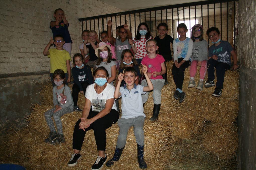Jeudi 5 Août 2021. Au centre équestre de Timborne, les enfants ont pu profiter d'une séance pédagogique sur l'anatomie du double poney avec Pollux! Les enfants ont visité la scellerie et ont pu faire une micro sieste dans le box de paille!!!