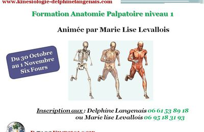 Formation D'anatomie