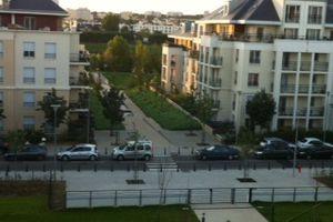 #20 - Problématique de circulation rue de la Senette