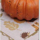 Da oggi pensiamo all'autunno!