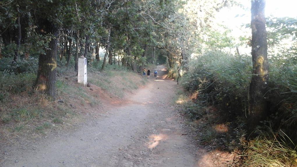 Chemin faisant - J 6
