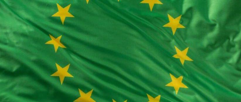 RoumanIE : Economie verte – Des projets et financements importants pour l'environnement !