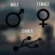 Male Female Gamer