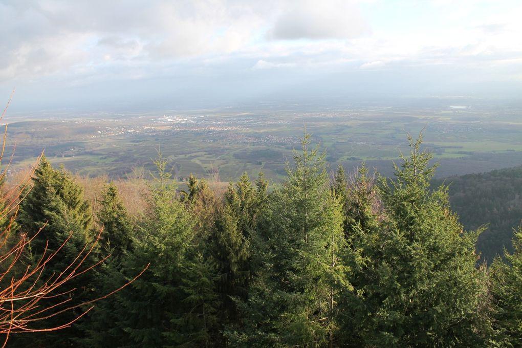 Le Mont Sainte Odile, Saint-Pierre, Gertwiller en passant par Obernai