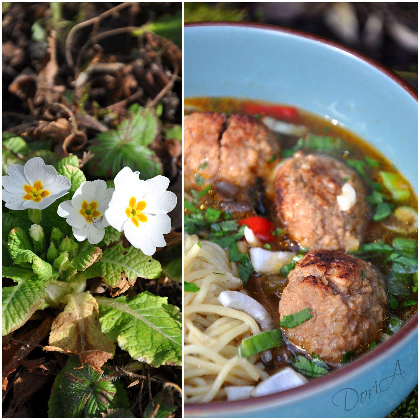 Soupe asiatique aux boulettes de boeuf et nouilles aux oeufs