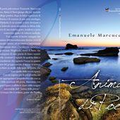 """Questa è la cover di """"Anima di Poesia"""", la mia seconda raccolta di poesie e quarta pubblicazione, uscita il 27 gennaio 2014 con TraccePer LaMeta ..."""
