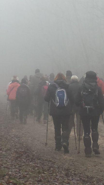 randonnée brumeuses et givrées du mercredi 12 décembre