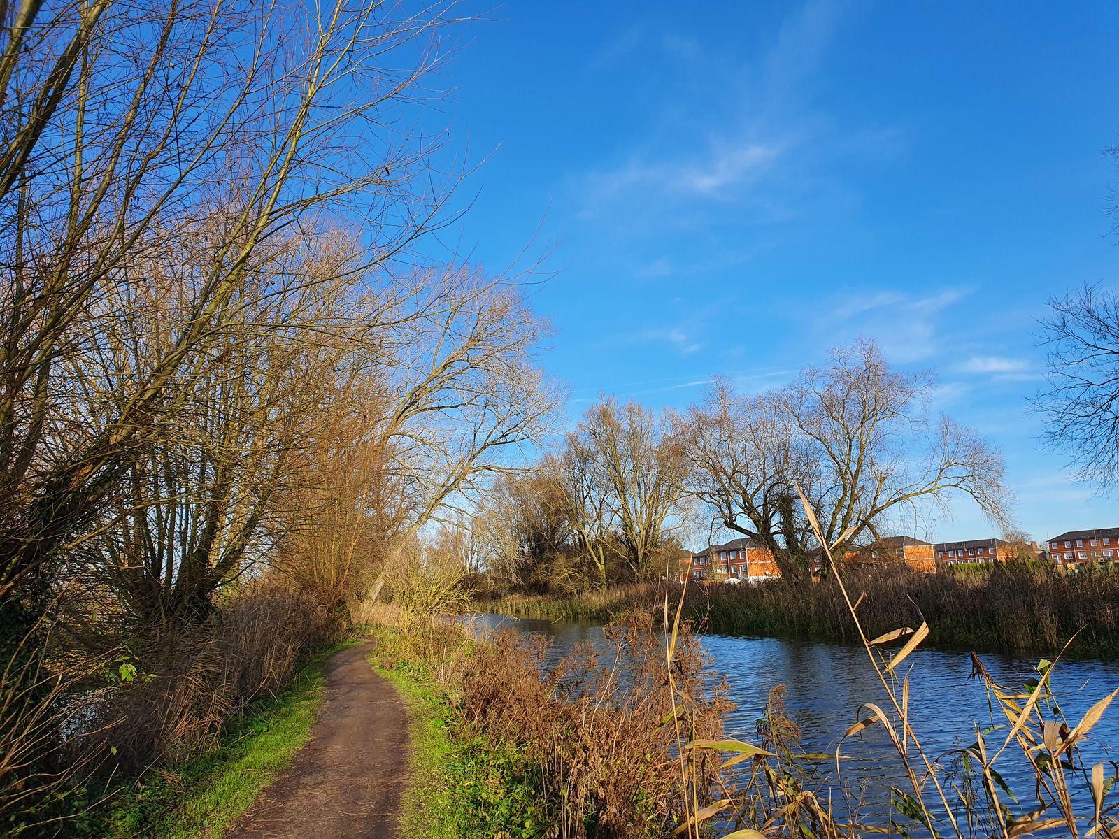 Le Marais de Lattre, à Wavrin