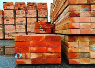 In Europa continua l'arrivo di legno da deforestazione illegale dell'Amazzonia