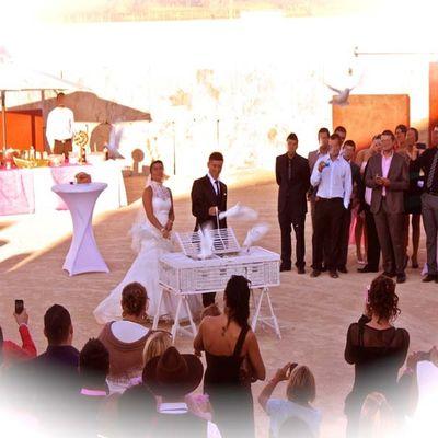 Magnifiques Mariage et Lâcher de Colombes dans le Gard