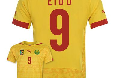 Buy Cheap Cameroon World Cup 2014 Kit