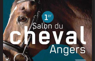 1er Salon du Cheval d'Angers (49) du 11 au 13 novembre 2016