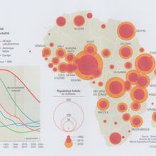 Idées/ Débat : Evolution démographique de l'Afrique