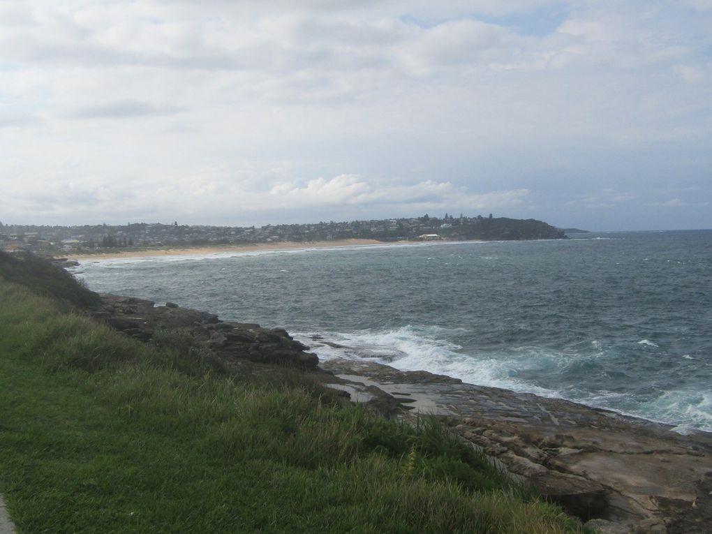 26 - De Narabeen Beach à Manly Beach