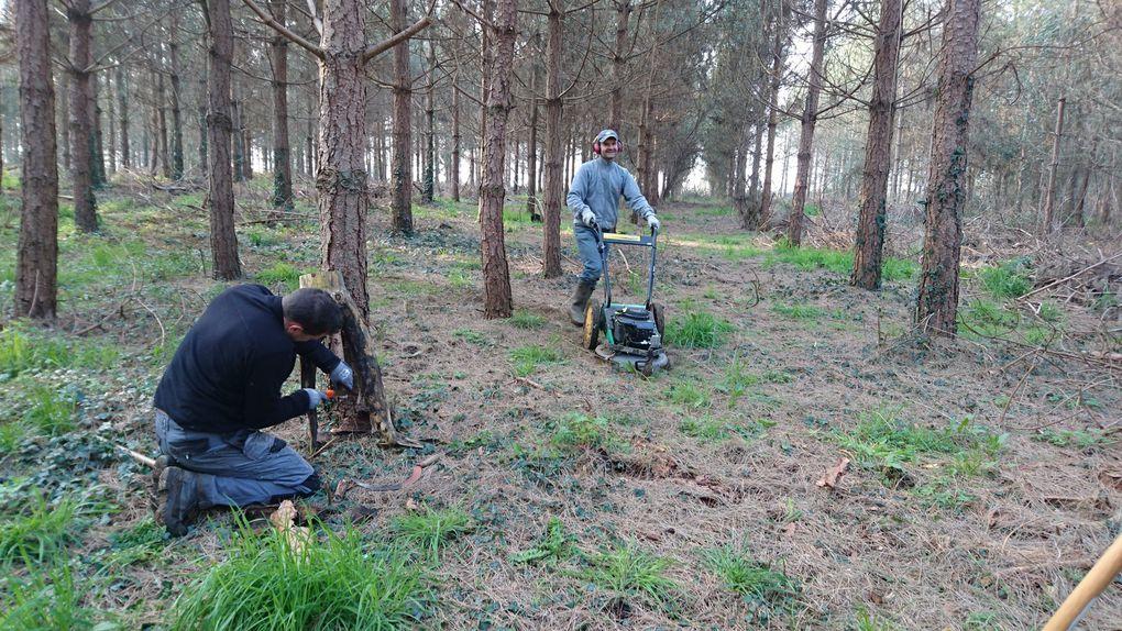 L équipe de l après-midi a trouver les restes de l homme des bois....reste plus qu'à lui trouver des vêtements,.