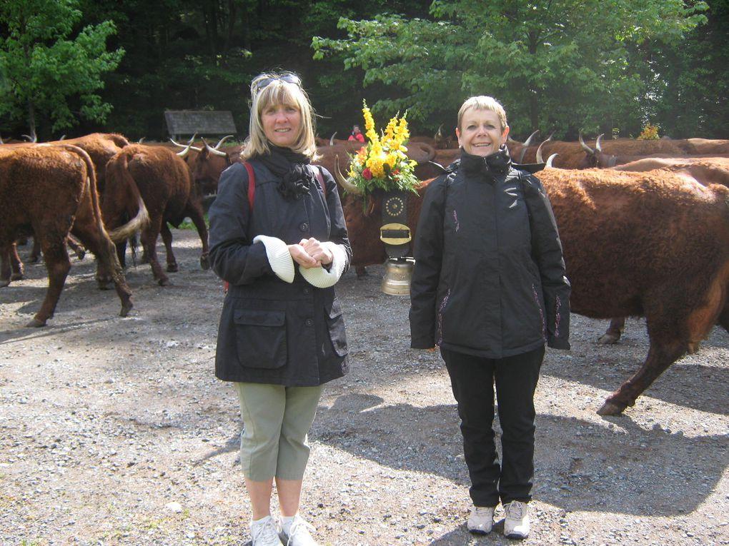 Au programme, marche avec le troupeau d'environ 12 km, accessible à tous, pause pendant la montée pour les bêtes et pour les marcheurs, animations diverses tel que bénédiction des vaches dont certaines seront décorées, folklore, cors des alp