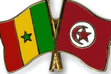 #Racisme / Tunisie 1 - Sénégal 0 (#Vidéo #KhadyTallDiagne)